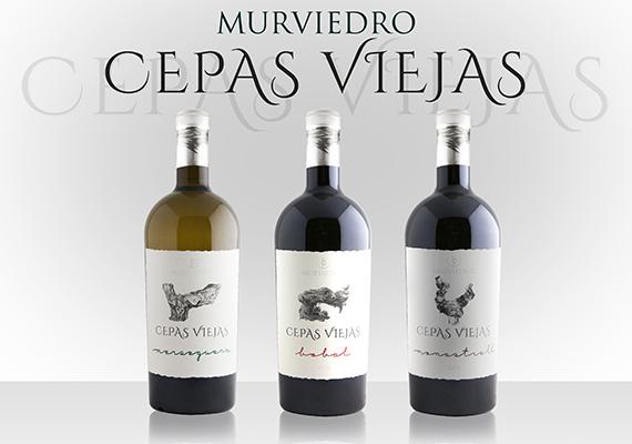 CEPAS-VIEJAS-570x400
