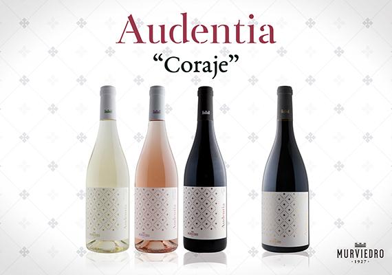audentia-570x400