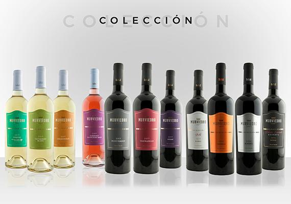 coleccion-familia-570x400