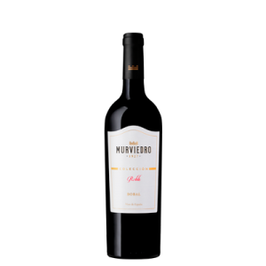 Vino Murviedro | Murviedro Colección Roble Bobal | Bodegas Murviedro