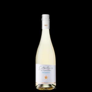 Vino Murviedro | Estrella de Murviedro Vino de Aguja Blanco | Bodegas Murviedro